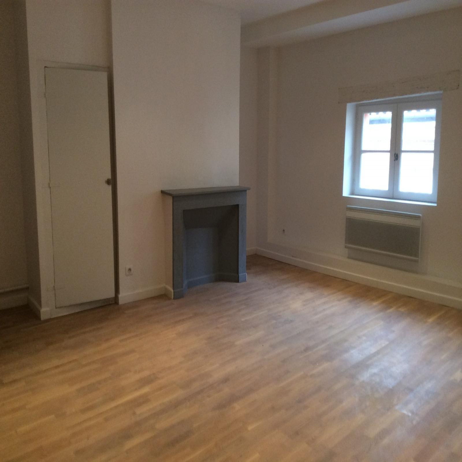 Image_, Appartement, Toulouse, ref :LAP30000344